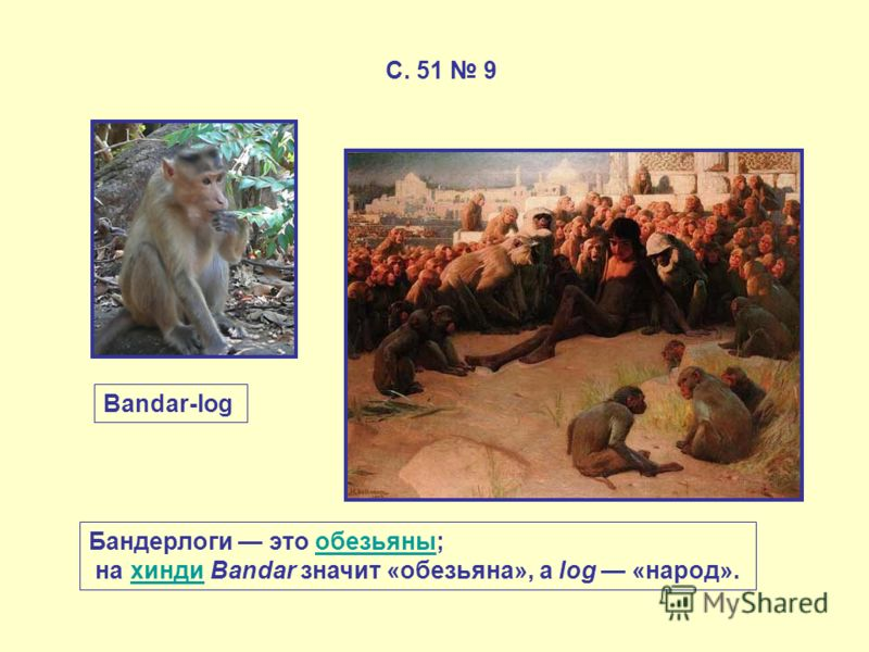 С. 51 9 Bandar-log Бандерлоги это обезьяны;обезьяны на хинди Bandar значит «обезьяна», а log «народ».хинди