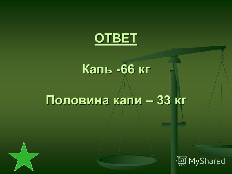 ОТВЕТ Капь -66 кг Половина капи – 33 кг