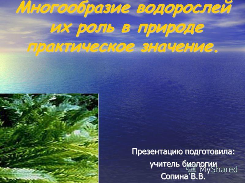 Многообразие водорослей их роль в природе практическое значение. Презентацию подготовила: учитель биологии Сопина В.В.
