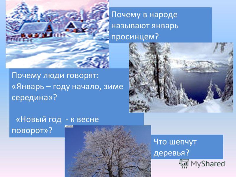 Почему в народе называют январь просинцем? Почему люди говорят: «Январь – году начало, зиме середина»? «Новый год - к весне поворот»? Что шепчут деревья?