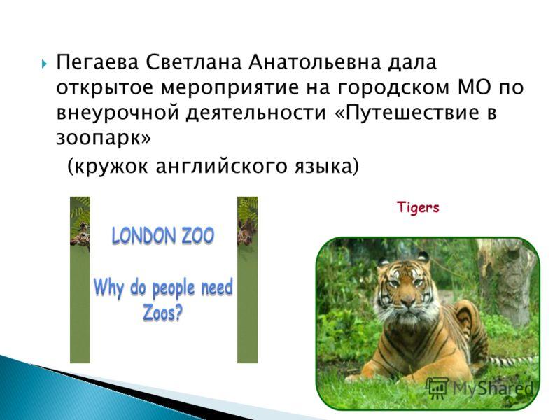 Пегаева Светлана Анатольевна дала открытое мероприятие на городском МО по внеурочной деятельности «Путешествие в зоопарк» (кружок английского языка) Tigers