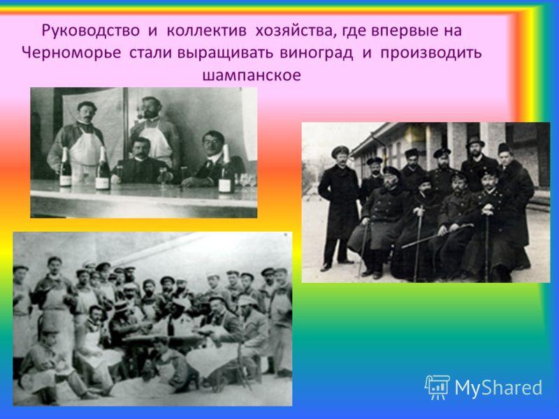 Руководство и коллектив хозяйства, где впервые на Черноморье стали выращивать виноград и производить шампанское