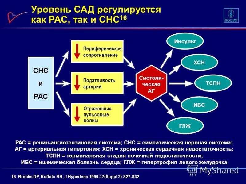 Уровень САД регулируется как РАС, так и СНС 16 РАС = ренин-ангиотензиновая система; СНС = симпатическая нервная система; АГ = артериальная гипертония; ХСН = хроническая сердечная недостаточность; ТСПН = терминальная стадия почечной недостаточности; И