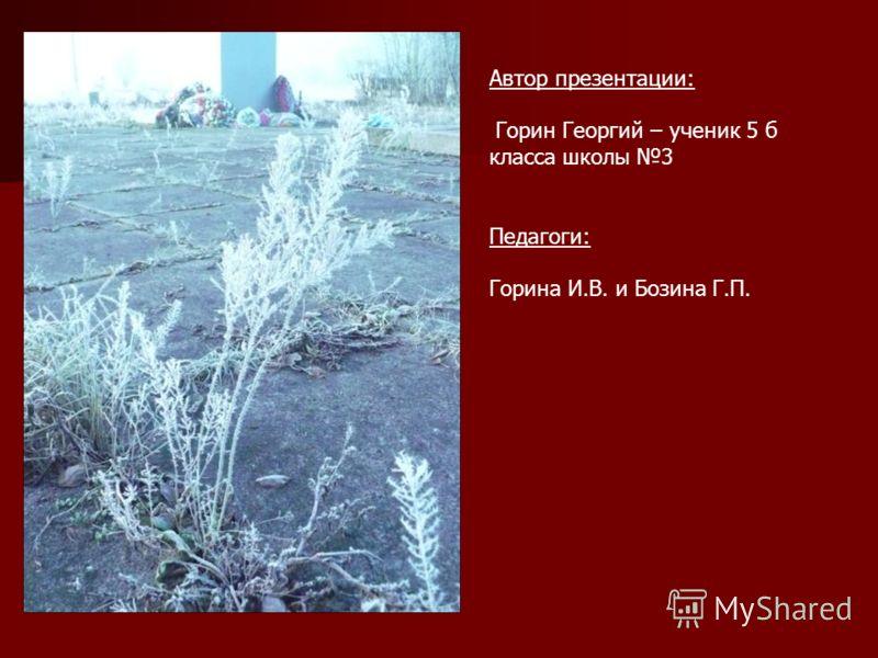 Автор презентации: Горин Георгий – ученик 5 б класса школы 3 Педагоги: Горина И.В. и Бозина Г.П.