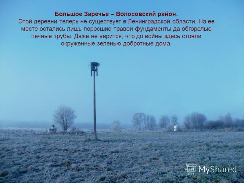 Большое Заречье – Волосовский район. Этой деревни теперь не существует в Ленинградской области. На ее месте остались лишь поросшие травой фундаменты да обгорелые печные трубы. Даже не верится, что до войны здесь стояли окруженные зеленью добротные до