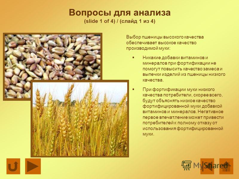 Вопросы для анализа (slide 1 of 4) / (слайд 1 из 4) Выбор пшеницы высокого качества обеспечивает высокое качество производимой муки: Никакие добавки витаминов и минералов при фортификации не помогут повысить качество замеса и выпечки изделий из пшени