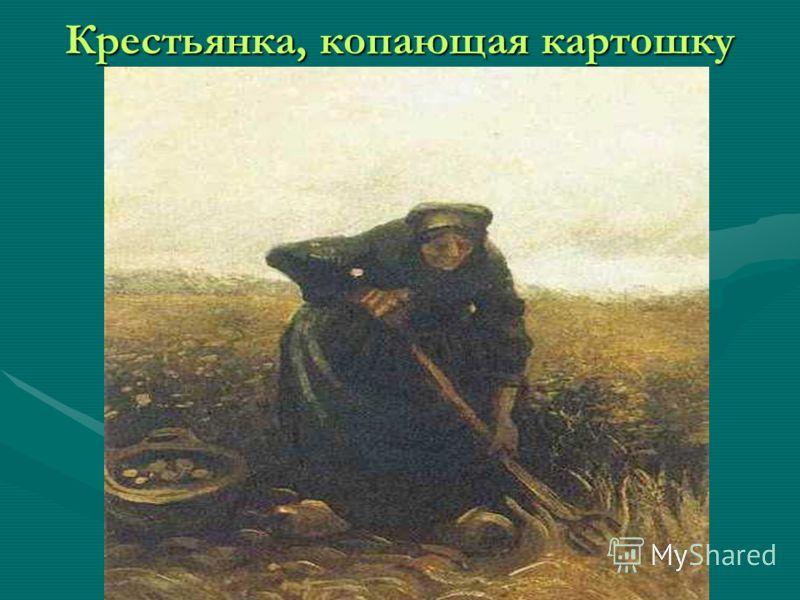 Крестьянка, копающая картошку