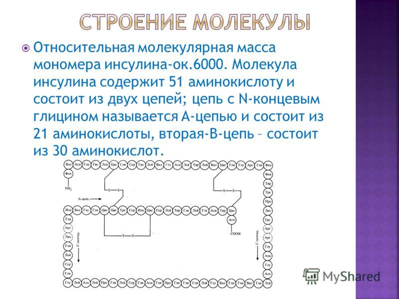 Относительная молекулярная масса мономера инсулина-ок.6000. Молекула инсулина содержит 51 аминокислоту и состоит из двух цепей; цепь с N-концевым глицином называется A-цепью и состоит из 21 аминокислоты, вторая-B-цепь – состоит из 30 аминокислот.