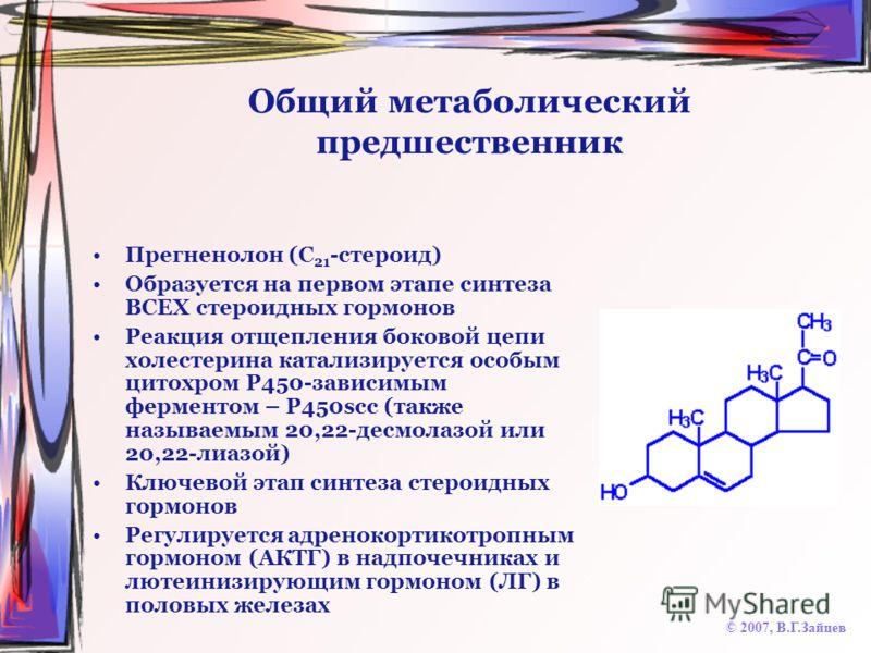 Общий метаболический предшественник Прегненолон (C 21 -стероид) Образуется на первом этапе синтеза ВСЕХ стероидных гормонов Реакция отщепления боковой цепи холестерина катализируется особым цитохром Р450-зависимым ферментом – Р450scc (также называемы