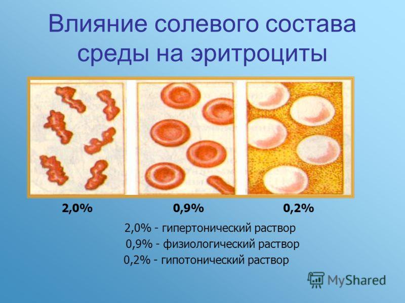 Влияние солевого состава среды на эритроциты 2,0%0,9%0,2% 2,0% - гипертонический раствор 0,9% - физиологический раствор 0,2% - гипотонический раствор
