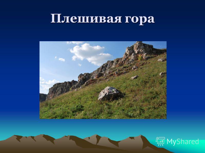 Плешивая гора