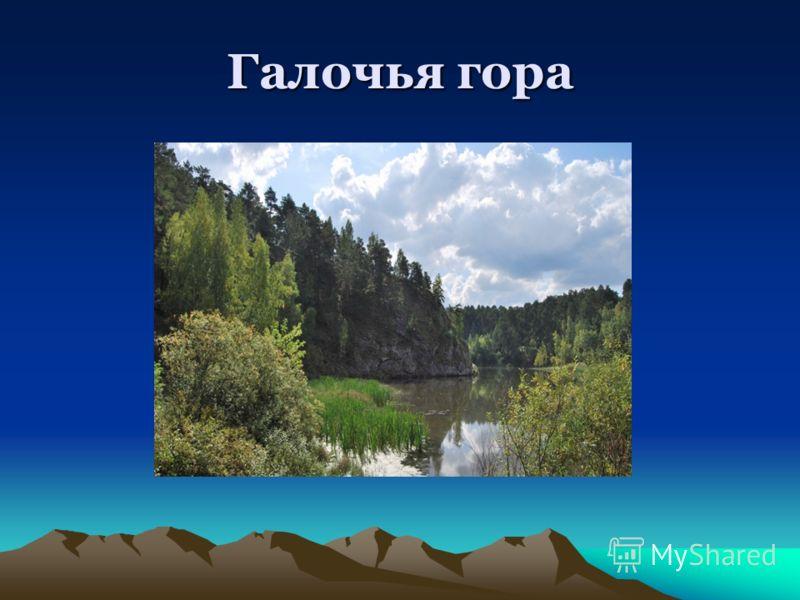 Галочья гора