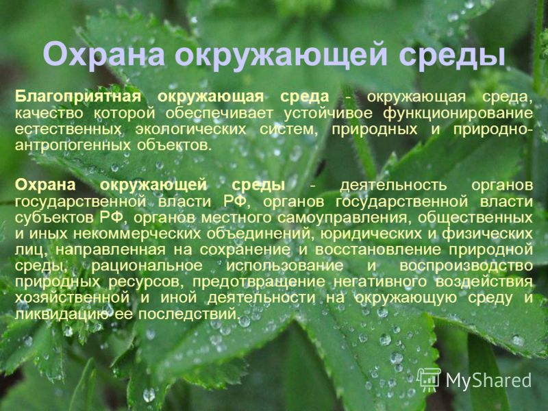 Охрана окружающей среды Благоприятная окружающая среда - окружающая среда, качество которой обеспечивает устойчивое функционирование естественных экологических систем, природных и природно- антропогенных объектов. Охрана окружающей среды - деятельнос