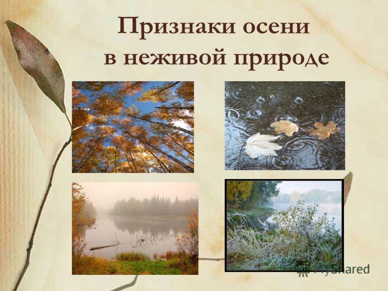 Признаки осени в неживой природе
