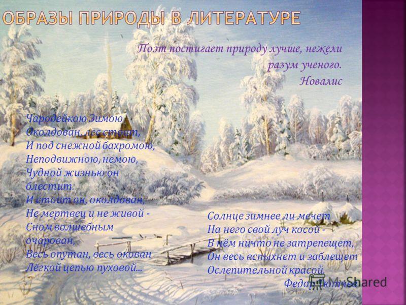 Русские художники XIX в. А. Саврасов, И. Левитан, И. Шишкин и другие открыли красоту родной земли. Люди словно впервые увидели на их картинах и прозрачный весенний воздух, и наполненные весенним соком, оживающие березы; услышали веселый, исполненный