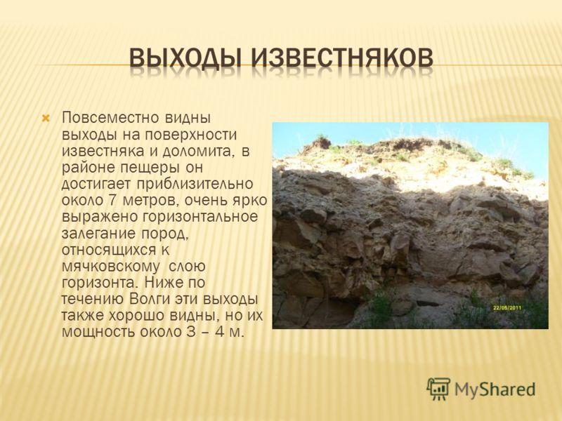 Повсеместно видны выходы на поверхности известняка и доломита, в районе пещеры он достигает приблизительно около 7 метров, очень ярко выражено горизонтальное залегание пород, относящихся к мячковскому слою горизонта. Ниже по течению Волги эти выходы
