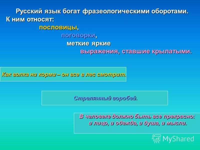 Русский язык богат фразеологическими оборотами. К ним относят: пословицы, пословицы, поговорки, поговорки, меткие яркие меткие яркие выражения, ставшие крылатыми. выражения, ставшие крылатыми. Как волка ни корми – он все в лес смотрит. В человеке дол