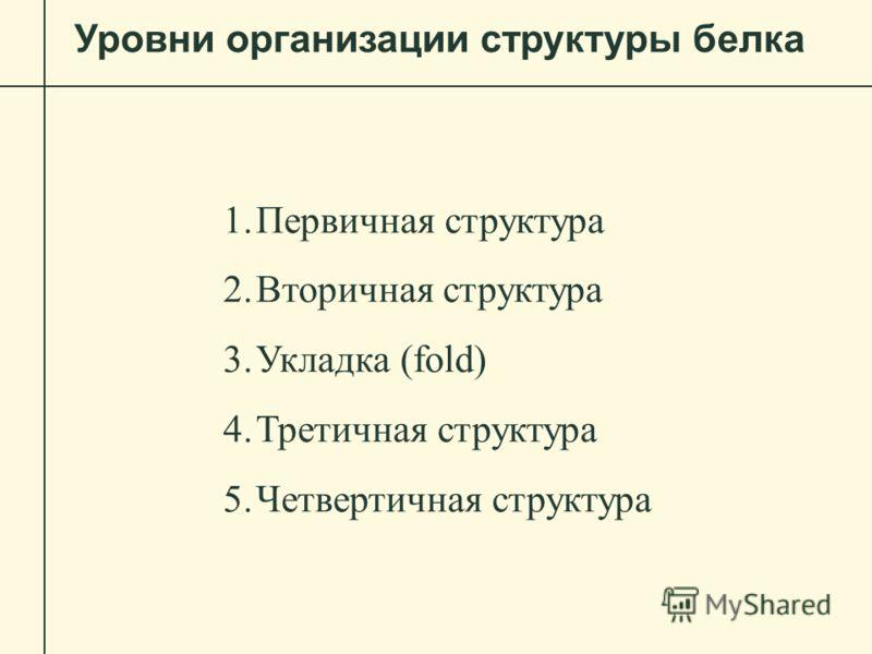Уровни организации структуры белка 1.Первичная структура 2.Вторичная структура 3.Укладка (fold) 4.Третичная структура 5.Четвертичная структура