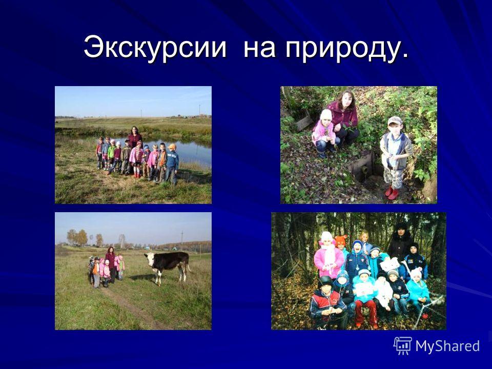 Экскурсии на природу.