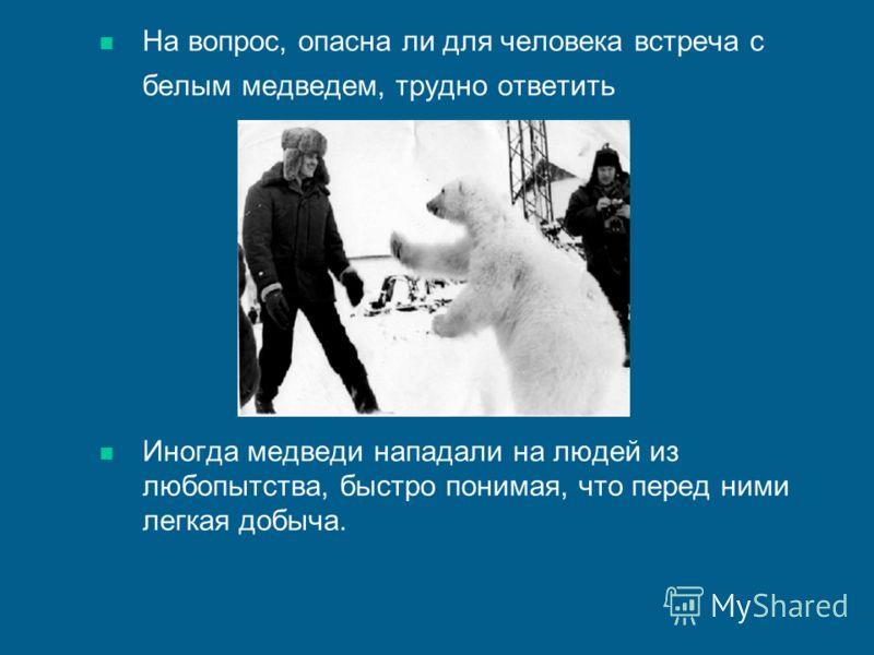 На вопрос, опасна ли для человека встреча с белым медведем, трудно ответить Иногда медведи нападали на людей из любопытства, быстро понимая, что перед ними легкая добыча.