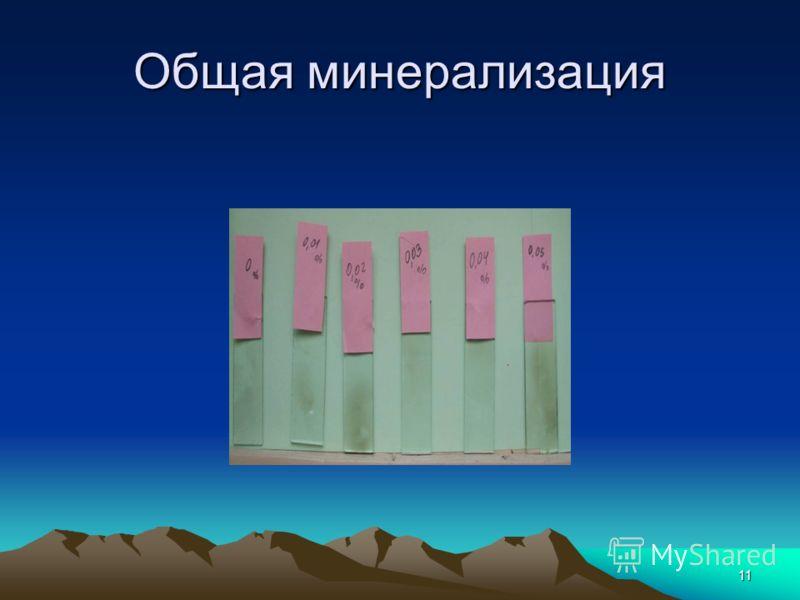 11 Общая минерализация
