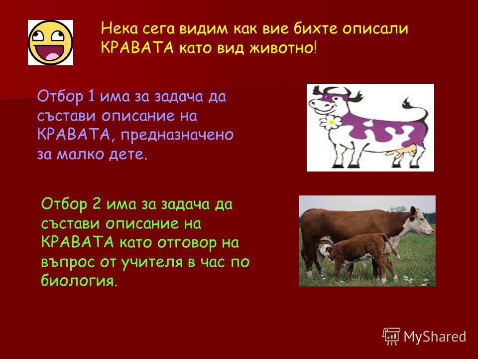 Нека сега видим как вие бихте описали КРАВАТА като вид животно! Отбор 1 има за задача да състави описание на КРАВАТА, предназначено за малко дете. Отбор 2 има за задача да състави описание на КРАВАТА като отговор на въпрос от учителя в час по биологи