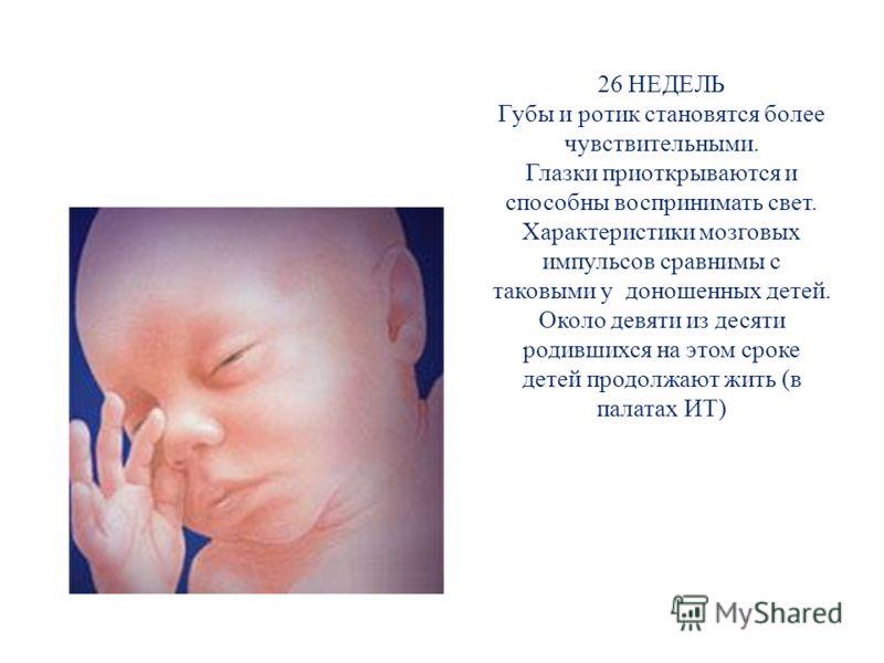 26 НЕДЕЛЬ Губы и ротик становятся более чувствительными. Глазки приоткрываются и способны воспринимать свет. Характеристики мозговых импульсов сравнимы с таковыми у доношенных детей. Около девяти из десяти родившихся на этом сроке детей продолжают жи