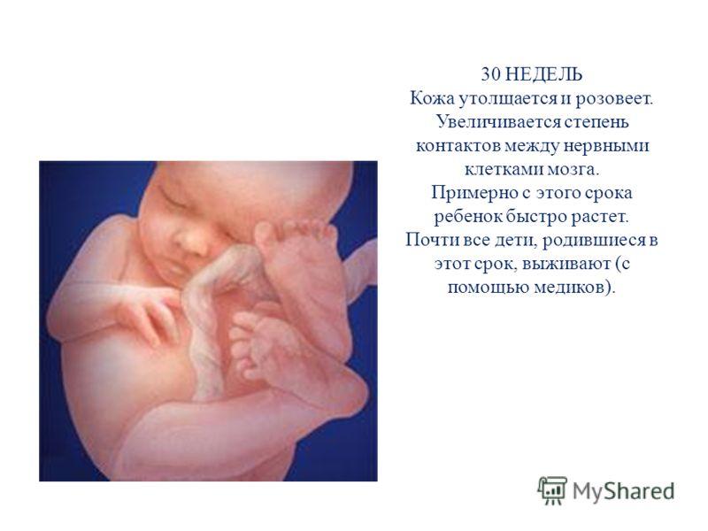 30 НЕДЕЛЬ Кожа утолщается и розовеет. Увеличивается степень контактов между нервными клетками мозга. Примерно с этого срока ребенок быстро растет. Почти все дети, родившиеся в этот срок, выживают (с помощью медиков).