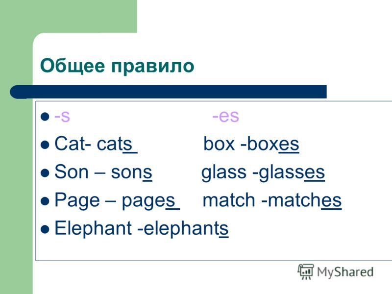 Общее правило -s -es Cat- cats box -boxes Son – sons glass -glasses Page – pages match -matches Elephant -elephants