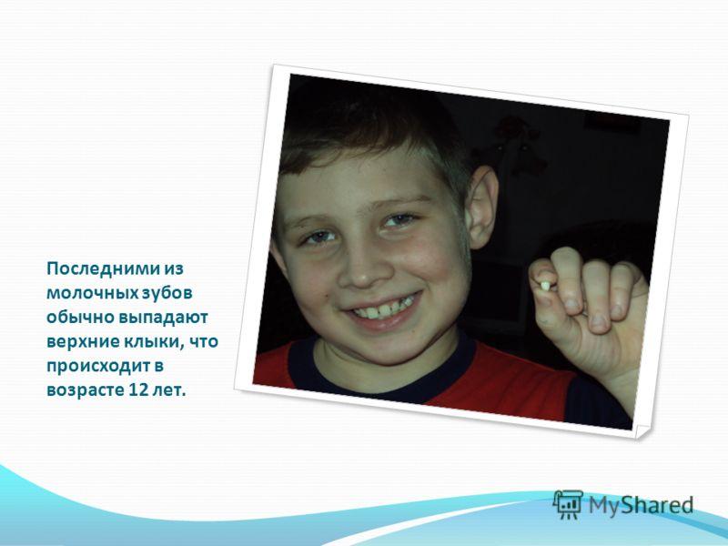 Последними из молочных зубов обычно выпадают верхние клыки, что происходит в возрасте 12 лет.