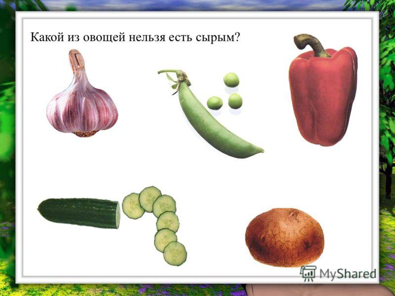 Какой из овощей нельзя есть сырым?