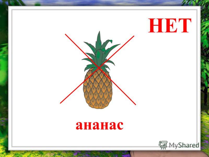 НЕТ ананас