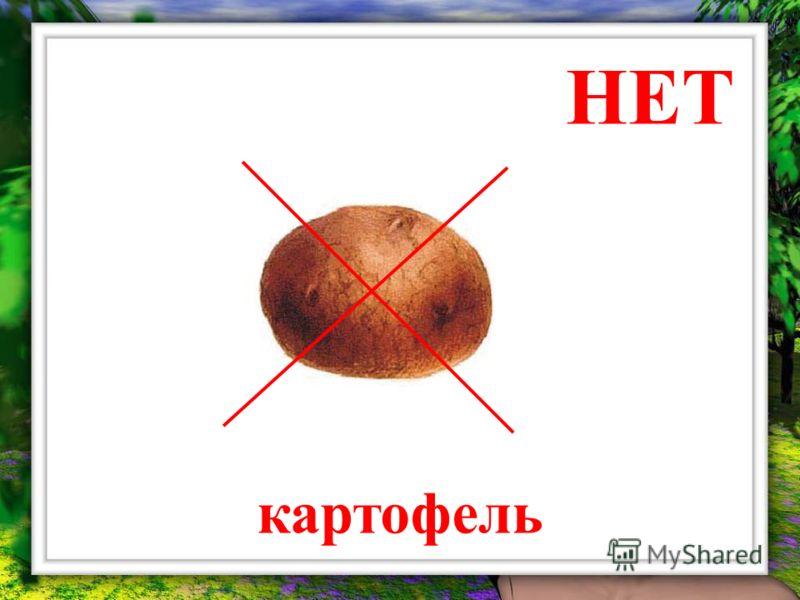 НЕТ картофель