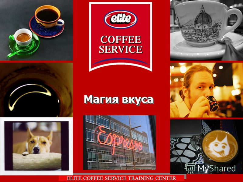 ELITE COFFEE SERVICE TRAINING CENTER Магия вкуса