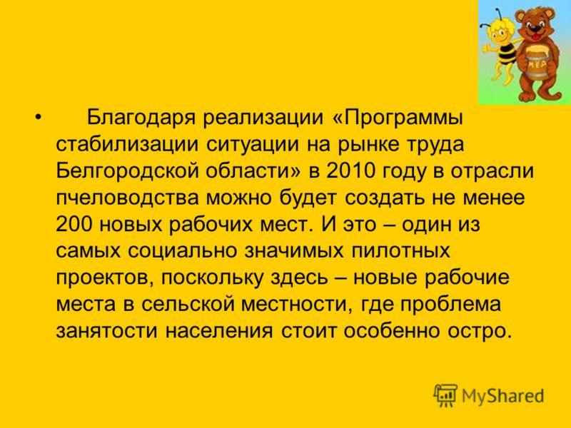 Благодаря реализации «Программы стабилизации ситуации на рынке труда Белгородской области» в 2010 году в отрасли пчеловодства можно будет создать не менее 200 новых рабочих мест. И это – один из самых социально значимых пилотных проектов, поскольку з