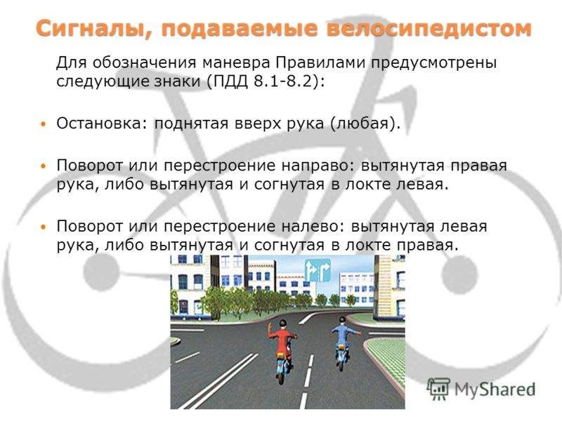Дорожные знаки для велосипедистов Светофоры для велосипедистов Знак 4.4 «Велосипедная дорожка» Знак 3.9 «Движение на велосипедах запрещено» 13