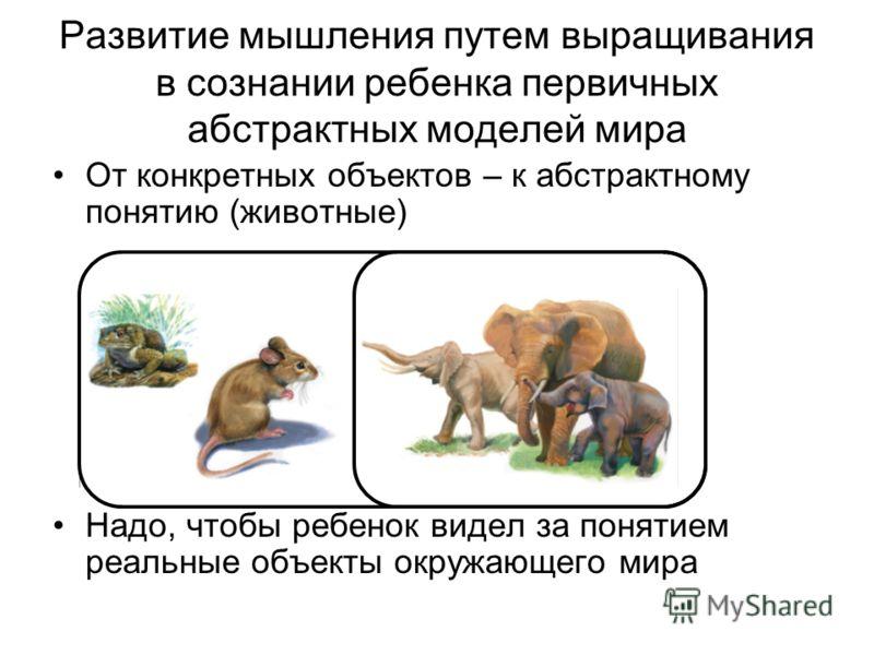 Развитие мышления путем выращивания в сознании ребенка первичных абстрактных моделей мира От конкретных объектов – к абстрактному понятию (животные) Надо, чтобы ребенок видел за понятием реальные объекты окружающего мира