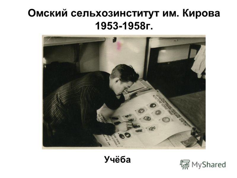 Омский сельхозинститут им. Кирова 1953-1958 г. Учёба