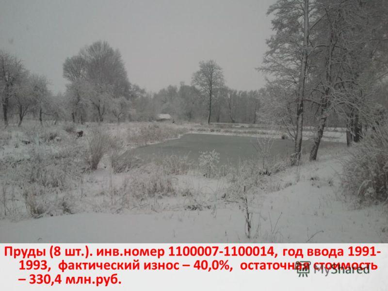 Пруды (8 шт.). инв.номер 1100007-1100014, год ввода 1991- 1993, фактический износ – 40,0%, остаточная стоимость – 330,4 млн.руб.