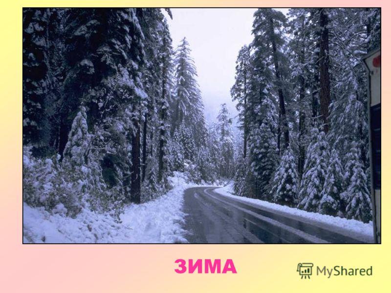 Физические явления зимой картинки