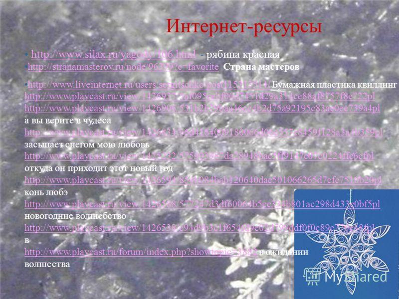 Интернет-ресурсы http://www.silax.ru/yagody/106.html - рябина краснаяhttp://www.silax.ru/yagody/106.html http://stranamasterov.ru/node/96399?c=favorite Страна мастеровhttp://stranamasterov.ru/node/96399?c=favorite http://www.liveinternet.ru/users/ser