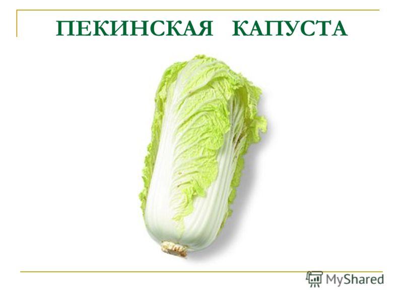 ПЕКИНСКАЯ КАПУСТА