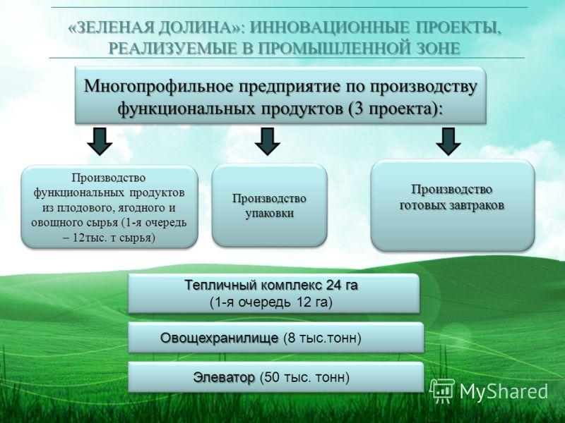 «ЗЕЛЕНАЯ ДОЛИНА»: ИННОВАЦИОННЫЕ ПРОЕКТЫ, РЕАЛИЗУЕМЫЕ В ПРОМЫШЛЕННОЙ ЗОНЕ Многопрофильное предприятие по производству функциональных продуктов (3 проекта): Производство упаковки Производство готовых завтраков Производство Тепличный комплекс 24 га (1-я
