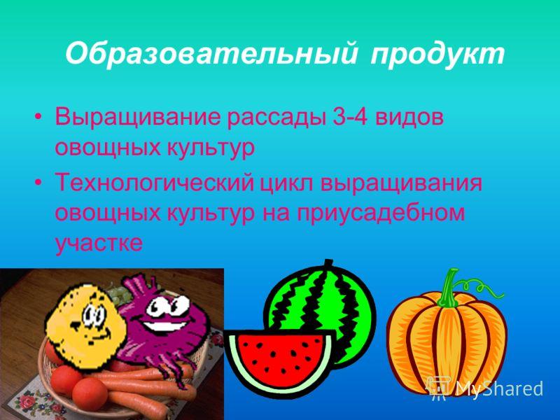 Образовательный продукт Выращивание рассады 3-4 видов овощных культур Технологический цикл выращивания овощных культур на приусадебном участке