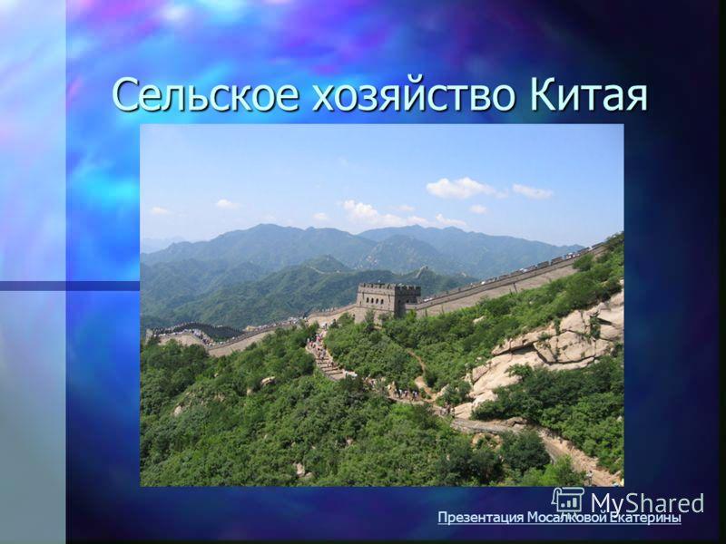 Сельское хозяйство Китая Презентация Мосалковой Екатерины