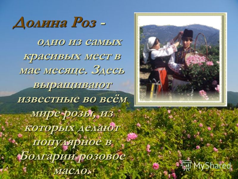 Долина Роз - одно из самых красивых мест в мае месяце. Здесь выращивают известные во всём мире розы, из которых делают популярное в Болгарии розовое масло.