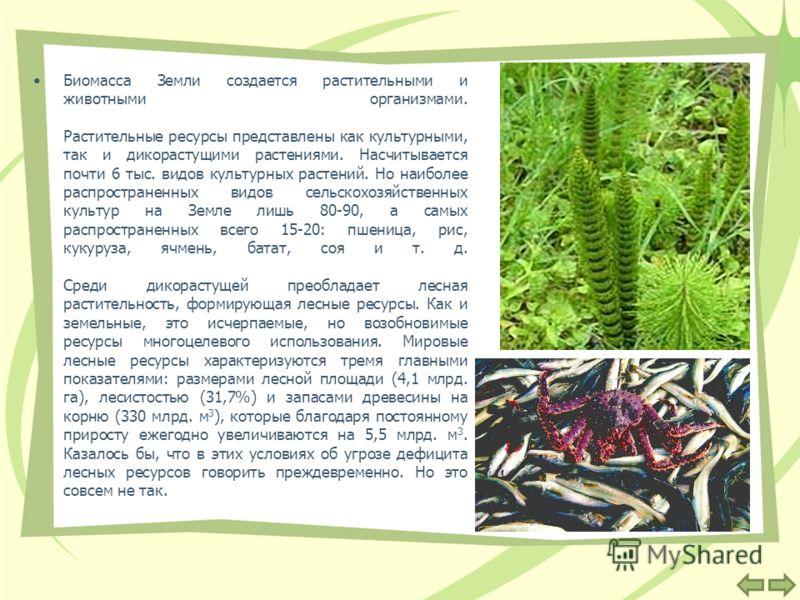 Биомасса Земли создается растительными и животными организмами. Растительные ресурсы представлены как культурными, так и дикорастущими растениями. Насчитывается почти 6 тыс. видов культурных растений. Но наиболее распространенных видов сельскохозяйст