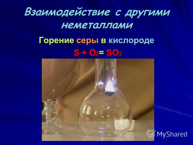 Взаимодействие с другими неметаллами Горение серы в кислороде S + O 2 = SO 2 S + O 2 = SO 2 ВАСИЛИЙ КАДЕВИЧ 2008г.