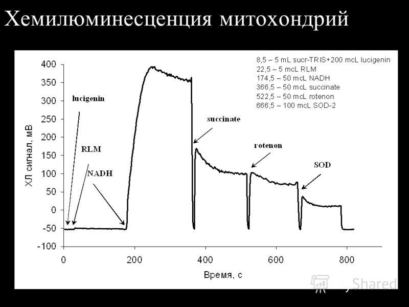 Хемилюминесценция при окислении ксантина -100 -50 0 50 100 150 200 250 300 350 400 450 120014001600180020002200 Время, с ХЛ сигнал, мВ 1256 – sucr-TRIS+100 mcL lucigenin+100mcL xantin 1346 – + XO less than 100 mcL 1686 – 100 mcL lucigenin 1804 – 100