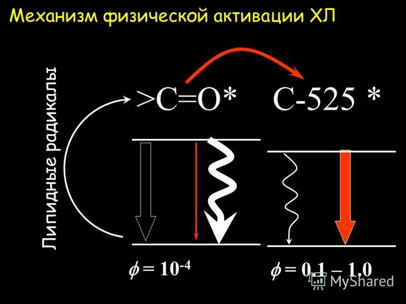 Хинолизин кумарины физические активаторы C-334 R = C-314 R = C-525 R = кумарин